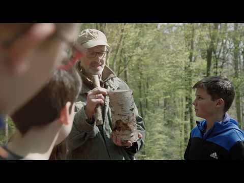 Hörst du, wie die Bäume sprechen? Eine kleine Entdeckungsreise durch den Wald YouTube Hörbuch Trailer auf Deutsch