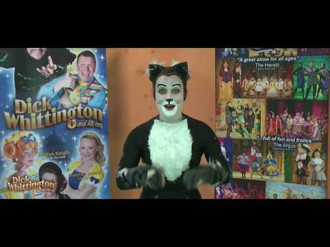 Meet our Cat from Dick Whittington and His Cat Eastbourne