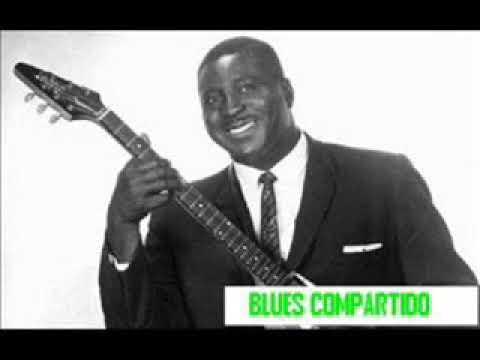 Albert King - Grant Park;  Chicago Blues Festival. 1988 Mp3