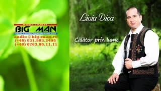 LIVIU DICA - Calator in lume (FOLCLOR ROMANIA)