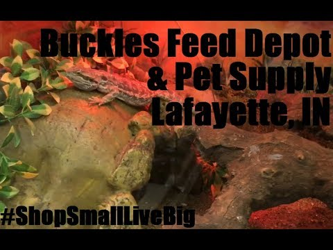Buckles Feed Depot & Pet Supply | Small Business Showcase