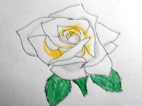 How to draw a yellow rose easy way drawing youtube how to draw a yellow rose easy way drawing ccuart Gallery