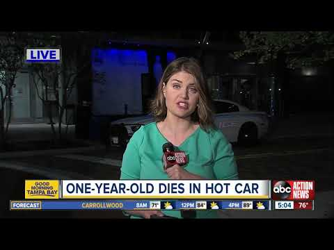 Mychal Maguire - Tampa Toddler Dies After Being Left Inside Hot Car For Hours