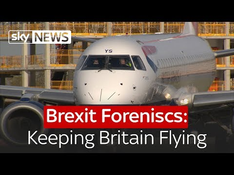 Brexit Forensics: Keeping Britain Flying