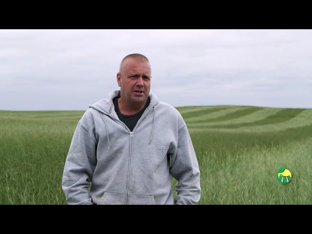 Planting Green - Robert Heidrich