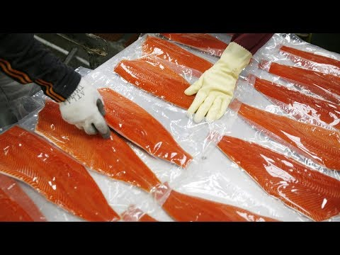 Salmon's future: Wild, farmed or GMO?