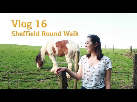 Vlog 16 | 谢菲超美的徒步路线 | Sheffield Round Walk