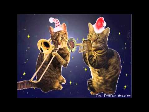 The Cattresses Christmas Wrapping