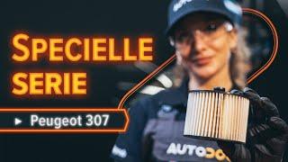 Skift Brændstoffilter PEUGEOT 307 SW (3H) - videovejledning