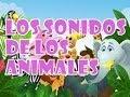 Sonidos De Animales | Escuchar Sonidos De Animales Sonidos de Animales Domesticos y Salvajes Online