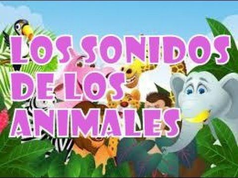 DE DESCARGAR TAMBORES SONIDO REDOBLE DE