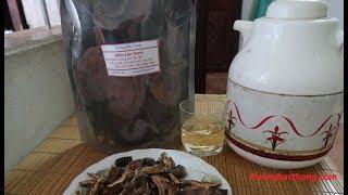 Cách Sử Dụng Nấm Lim Xanh Tự Nhiên || Nấm Lim Xanh || Ruongbacthang.com