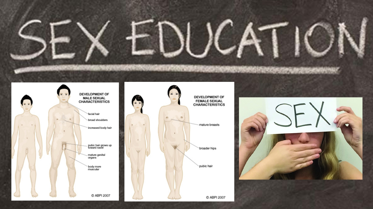 Sex Education Official Trailer