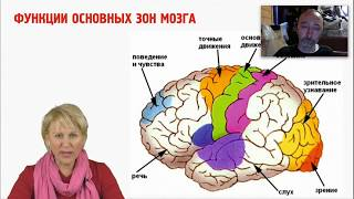 Нервная система. О.А. Бутакова и Ю.А. Фролов