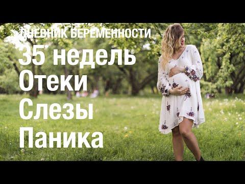 Дневник беременности. 35 неделя 🤰IRENA BERRY