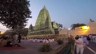 Дерево Будды. Бодхгайя. Индия. Part 3. Bodhgaya. India. Bodhi tree.