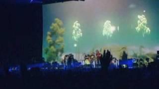 """ACIDMAN LIVE TOUR """"A beautiful greed""""の最終公演、キャリア史上2度目..."""