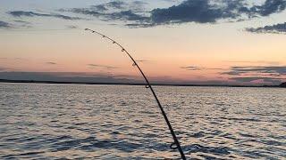 Рыбалка на рыбинском водохранилище 2021