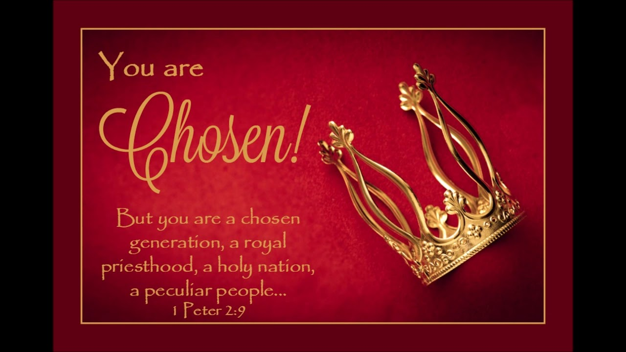 Image result for Royal Priesthood