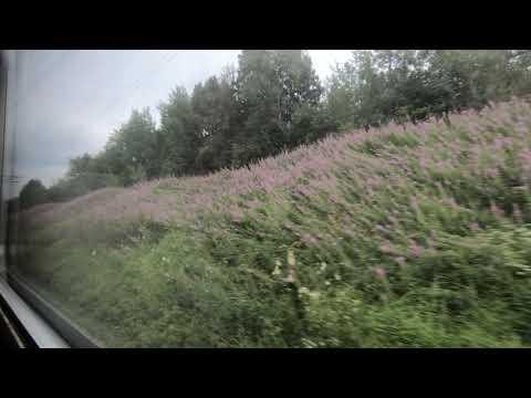 ЭД4М-0034, маршрут: Вязьма - Бородино / Train ED4M-0034, Route: Vyzhma - Borodino