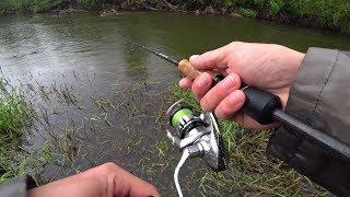 РАДИ ТАКОЙ РЫБАЛКИ СТОИЛО МОКНУТЬ под ДОЖДЕМ! Рыбалка на спиннинг.