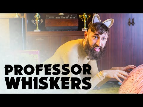 Professor Whiskers - Music Video #2 / Aunty Donna - The Album