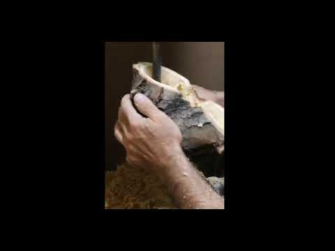 Hollowing a Burl or a Log