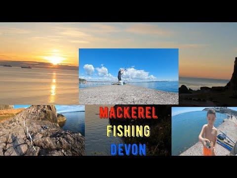 Mackerel Fishing Brixham Breakwater & Berry Head Devon