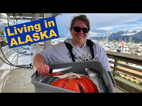 15 Things They Don't Tell You About LIVING in ALASKA