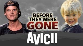 AVICII | Before They Were GONE | Tim Bergling | Wake Me Up