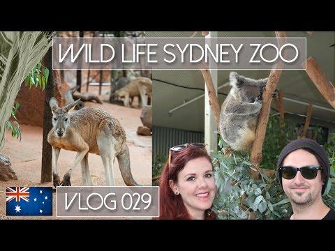 AUSTRALIA: WILDLIFE SYDNEY ZOO / SLAPPED IN THE FACE! - VLOG 029