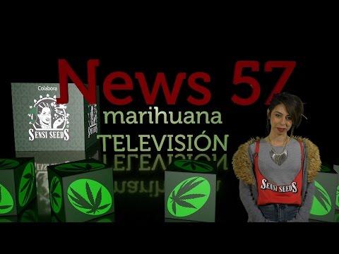 CANNABIS EN EL CONGRESO, HEAVENGROWN Cáñamo Industrial MEXICO en NEWS 57
