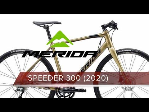 Merida SPEEDER 300 CARBON FORKS