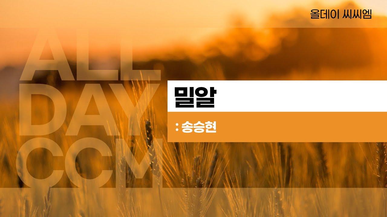 [ALL DAY CCM] 밀알 - 송승현