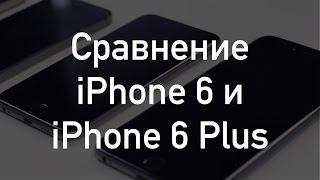 Сравнение iPhone 6 и iPhone 6 Plus
