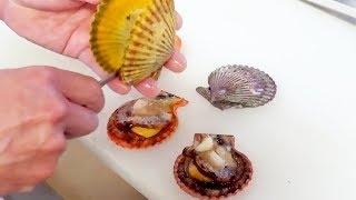 Japanese Street Food - Ultra-colorful! NOBLE SCALLOP Sashimi and Grill