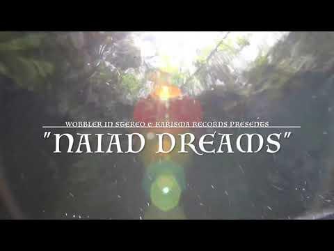 "Wobbler ""Naiad Dreams"" Official Live video"