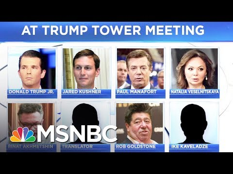 Eighth Person Identified At Trump Tower Meeting | MSNBC