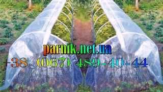Парник недорогой для дачи и сада.(Купить недорогой парник, который идеально подойдет как для дачи так и огорода Вы можете на сайте http://parnik.net.ua..., 2014-04-08T16:47:27.000Z)