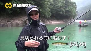 2016バラム本編