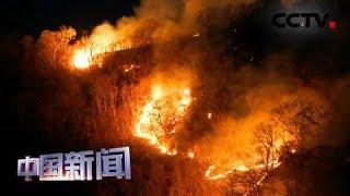 [中国新闻] 巴西亚马孙雨林大火持续燃烧 七国集团愿助亚马孙雨林灭火遭拒绝 | CCTV中文国际