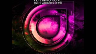 Download BT - Flaming June (Ashley Wallbridge Remix) MP3 song and Music Video