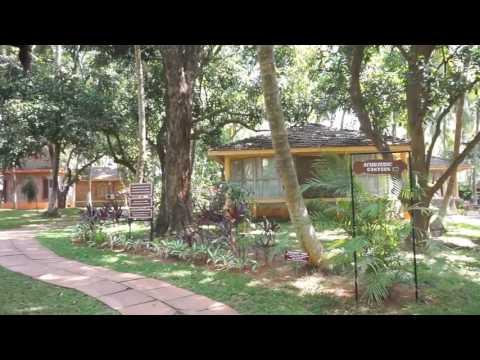 Kairali The Ayurvedic Healing Village