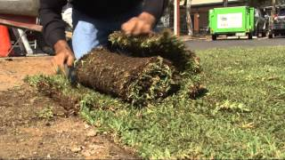 Easy Lawn Installation - Installation 4/5 - In the Garden with Kim Syrus - S2 Ep 09
