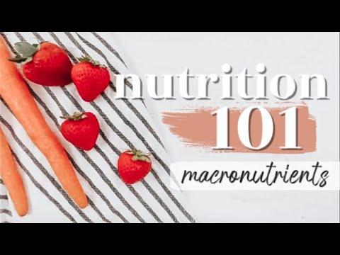 MACRONUTRIENTS: THE BASICS   Nutrition 101 Ep. 1