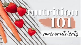 MACRONUTRIENTS: THE BASICS | Nutrition 101 Ep. 1