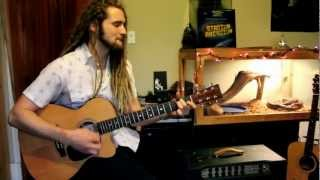 Red Hot Chili Peppers - Desecration Smile - Cover by Lane Argue