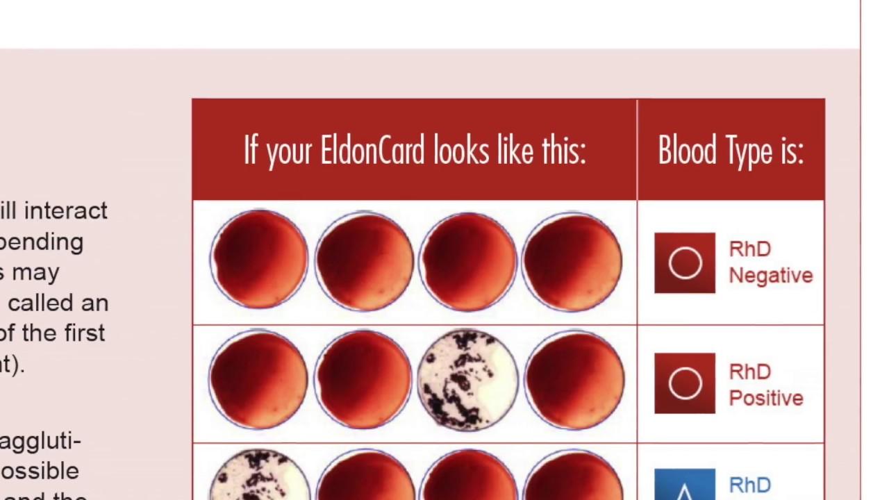 (New) Original Home Blood-Typing Kit