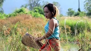 Beautiful Girl Fishing | Amazing Fishing In Cambodia |How To Lady Fishing By Hand#05