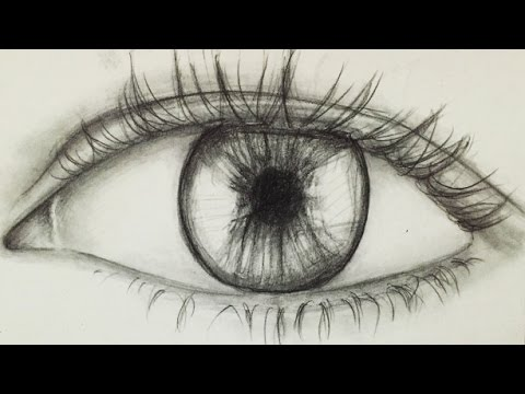 How to draw an eye for beginners alpha art youtube for Easy detailed drawings